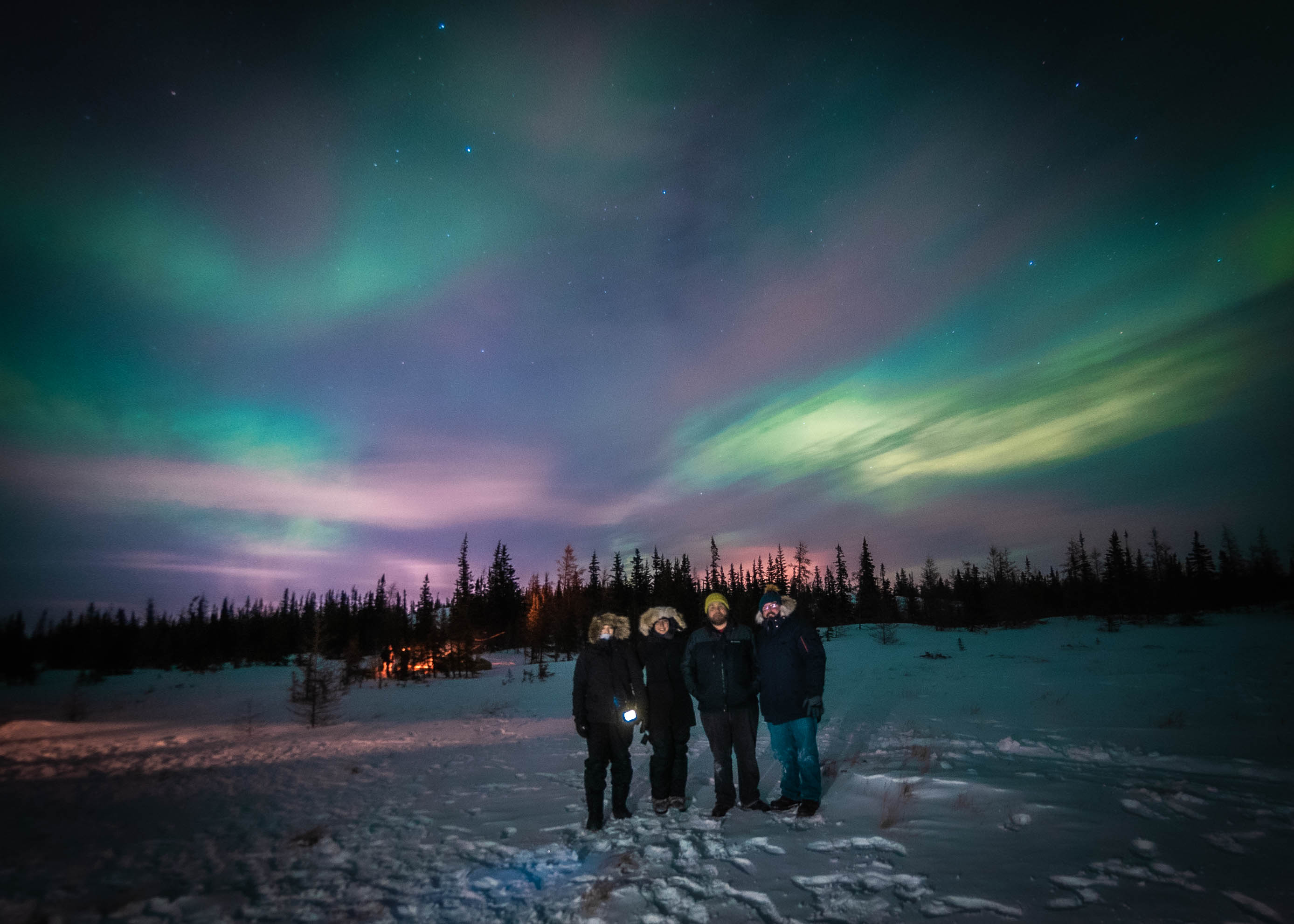 A group of people beneath the northern lights of Churchill, Canada