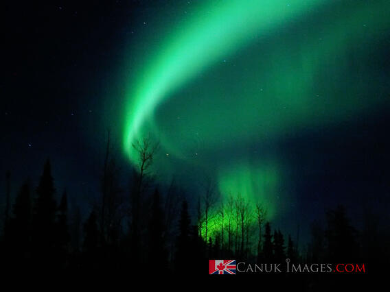 Northern Lights captured with a basic Canon digital camera