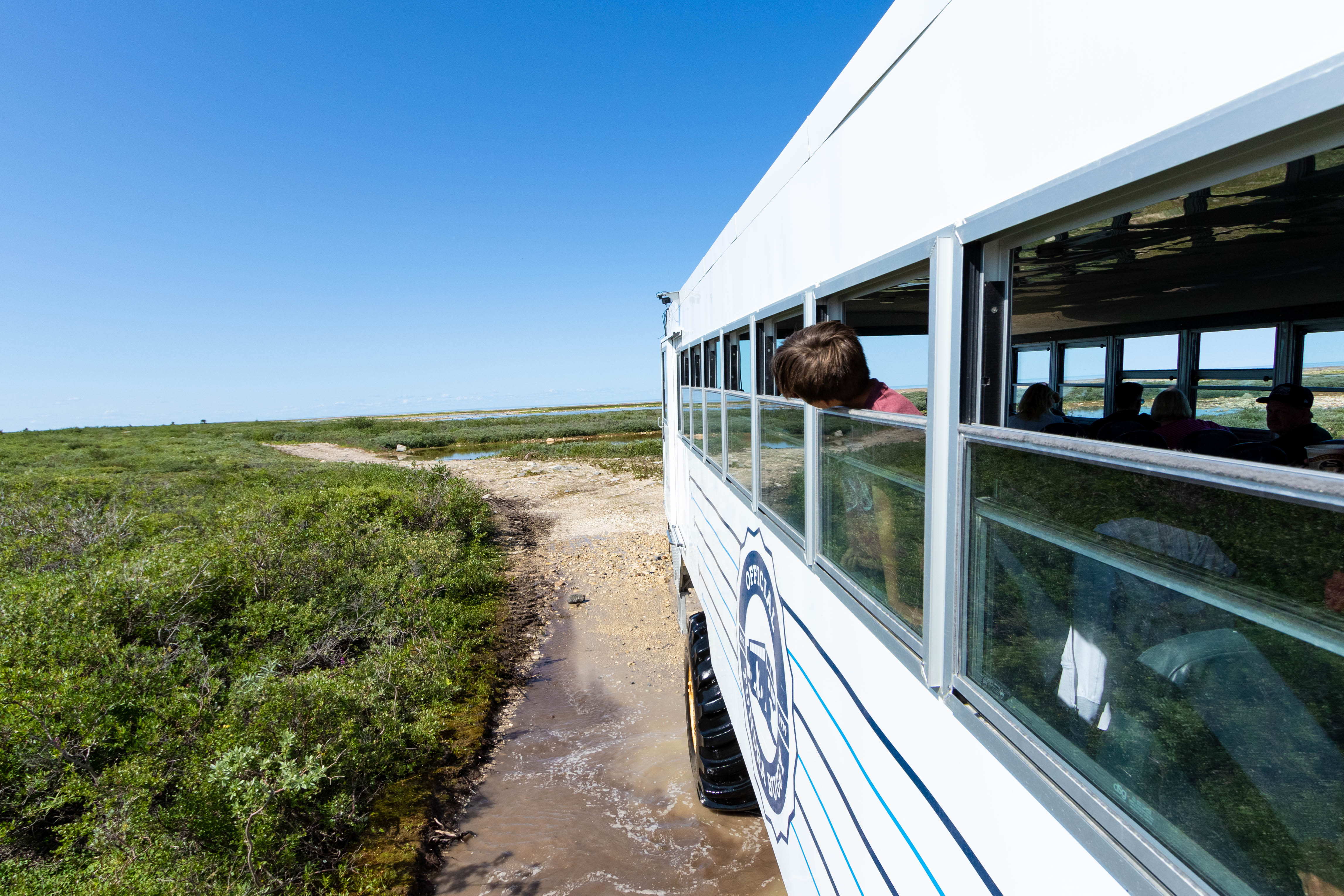 View from the Tundra Buggy in Churchill, Manitoba.