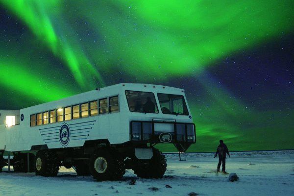A person stand on the tundra near a Tundra Buggy® looking up at a bright northern lights display above them.