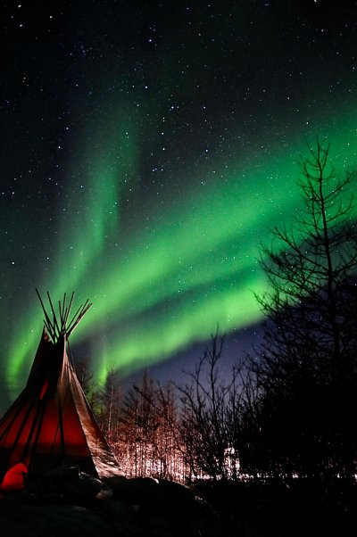 A tipi shelter sits amongst trees under an active aurora borealis above.