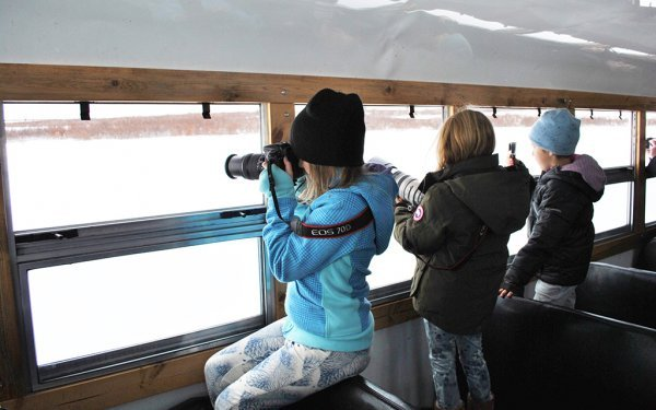 Children on a family adventure take photos of polar bears from the window of a Tundra Buggy®
